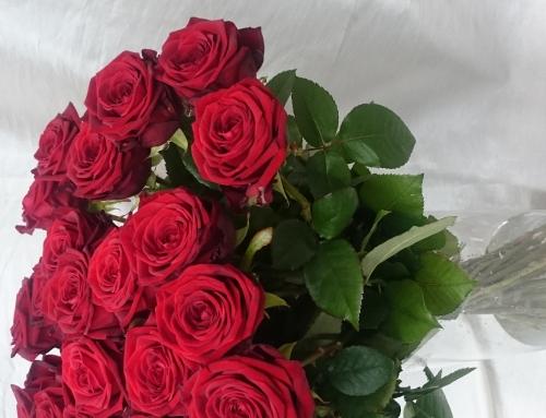 Kukkakimppu 17